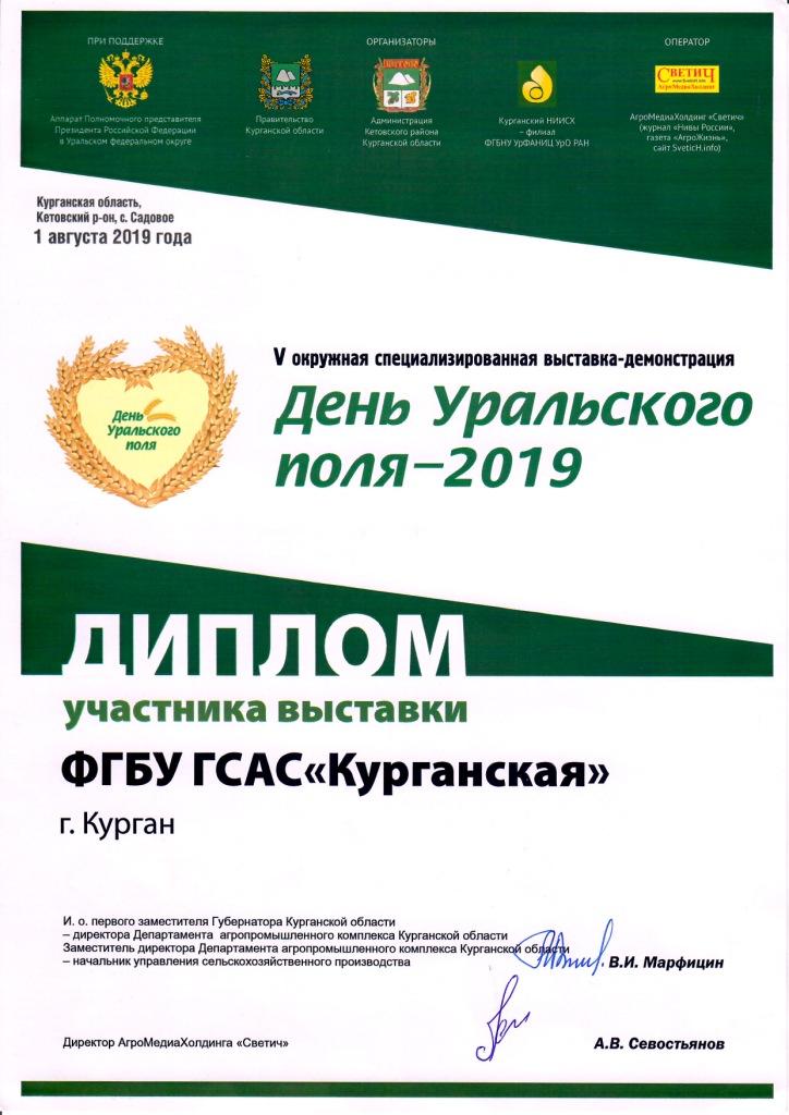 Диплом участника 2019